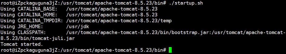 启动TomCat